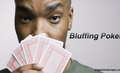 Poker Bluffing or Snapping